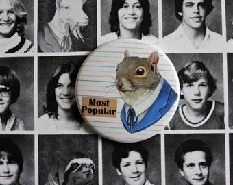 Mr. Squirrel Magnet