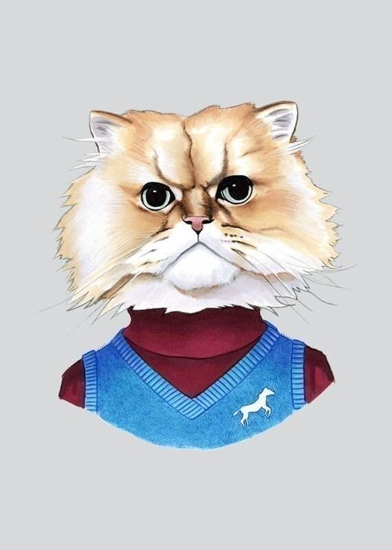 Fuzzy Cat print 11x14