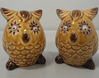 Vintage Owl Salt and Pepper Shaker Set with Wiggle Eyes