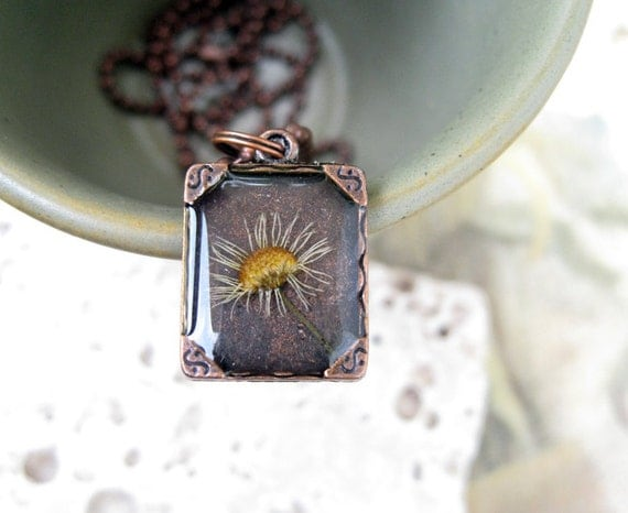 Wild Aster Pressed Flower Pendant in White and Copper