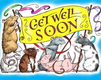 Rattie Get Well