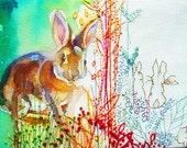 "Bunny rabbit 6"" x 4"" print. Mimilove"
