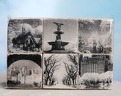 Central Park Infrared Magnet Set - set of 6