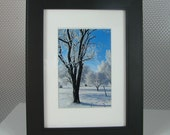 Matte and Framed Photo of Snow Tree 14