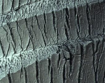 Coconut Palm Bark Texture - BLANK 5 X 7 NOTECARD frameable Art Photo with FREE Origami Crane