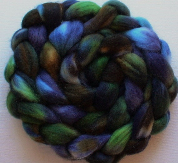 Hand Dyed Polwarth roving for spinning or felting Tui 3.7ozs
