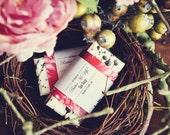 Raspberry Soap, Chocolate Soap, Truffle, Handmade Soap, Moisturizing Soap, Birthday Gift, Hostess Gift, Shea Butter, Goats Milk Soap