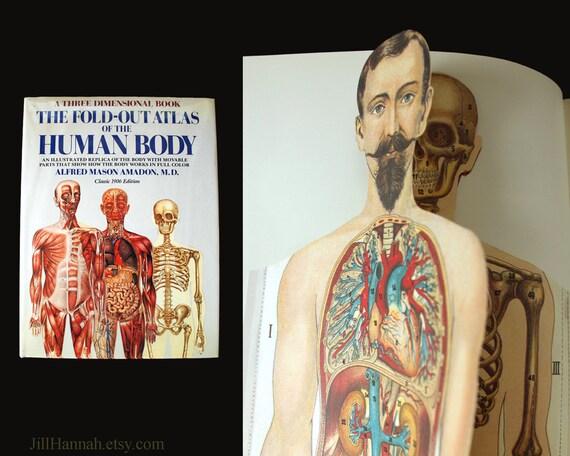 Human Anatomy Vintage Book Vintage Pop-up Anatomy