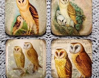 More Barn Owls -- Mousepad Coaster Set