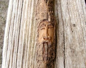 Royal Ancient - California Driftwood Carving