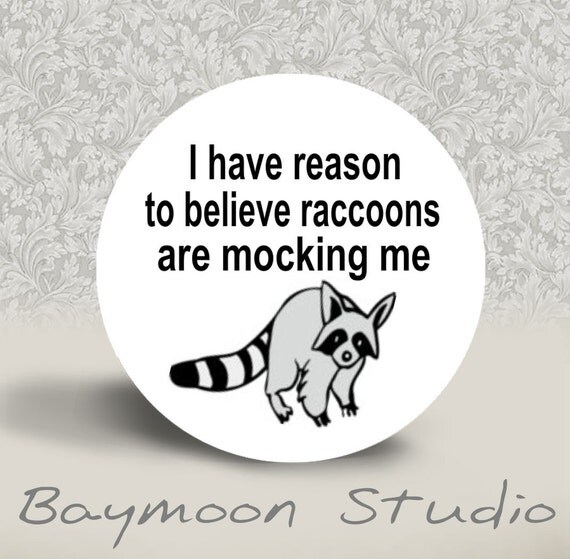 I have reason to believe raccoons are mocking me - PINBACK BUTTON or MAGNET - 1.25 inch round