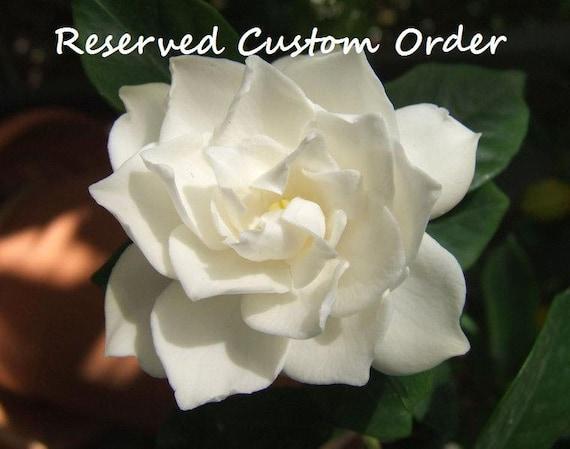 Custom Listing for Nichole