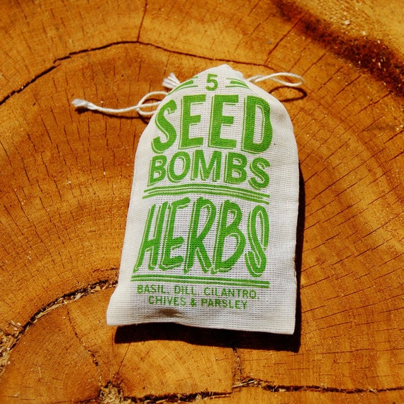 Herb Seed Bombs for an Edible Indoor or Outdoor Green Space