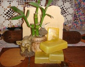 Eucalyptus Scented soap FREE SHIPPING