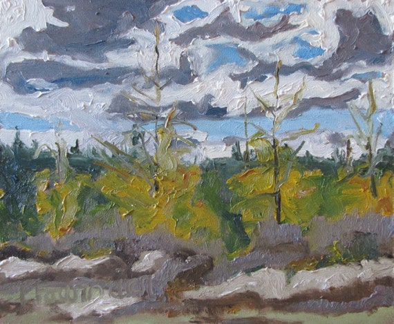 "Art Original Oil Painting Plein Air Landscape Canada Tree Fournier Appalachian Quebec "" The Golden Larch "" 10"" x 12"""