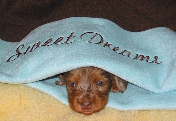 Sweet Dreams Snuggle Sack - Custom Embroidery - Personalized