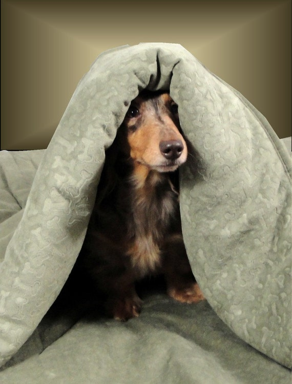 Dog Beds - Sage Down Alternative Snuggle Sack - Wow Factor Meets Easy Care - Includes Embroidered Personalization