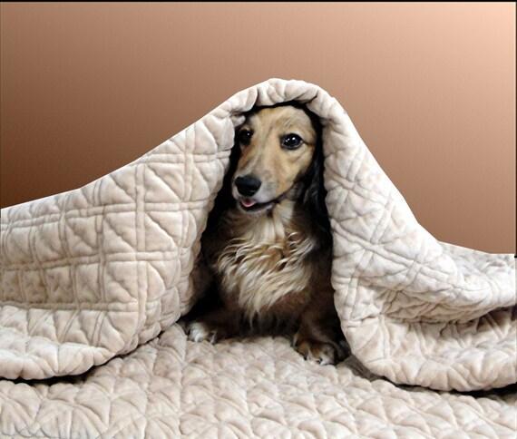 Snuggle Sack Dog Bed Pattern