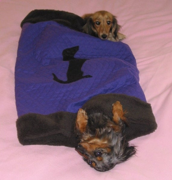 Dachshund Profile on Purple Boodle Tunnel Bed lined wiht Faux Fur
