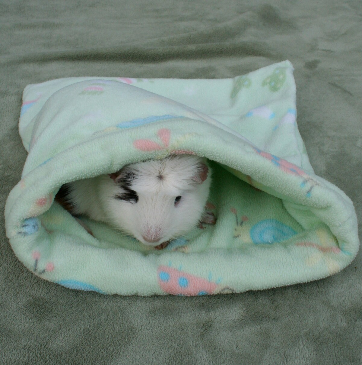 Piggy Pouch Fleece Guinea Ferret Pig Bed Bag By Eliabella