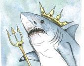 Shark King (an original hand painted king)