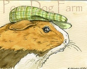 ACEO signed Print - Guinea Pig in a Hat