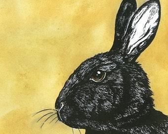 Black Rabbit 8x10 painted print
