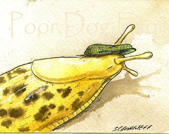 ACEo signed PRINT - Slug with hat-