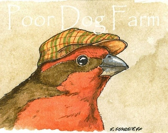 ACEO signed PRINT -Little Finch with hat