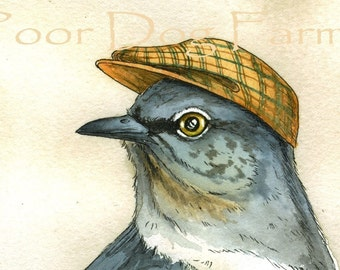 ACEO signed print - Handsome Mockingbird with hat