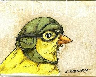 ACEO signed PRINT - Birds in helmets n0.2 -