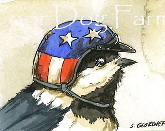 ACEO signed PRINT - Chickadee in biker helmet