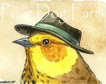 ACEO signed print - Tiny Warbler with Hat