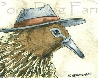 ACEO signed PRINT - Echinda with a hat