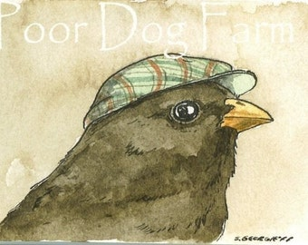 Junco with hat- 5x7 print