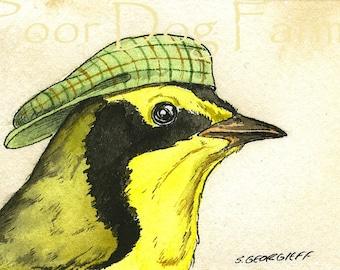 ACEO signed PRINT - Kentucky Warbler