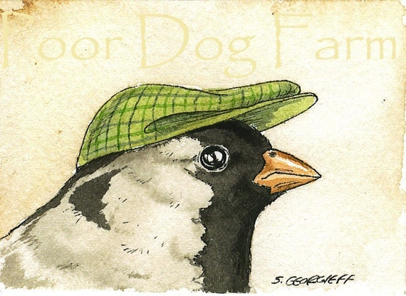 ACEO signed PRINT- Little Harris' Sparrow
