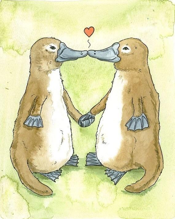 Platypus Lovers
