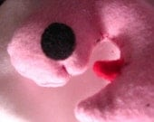 Pink Catnip Fetus