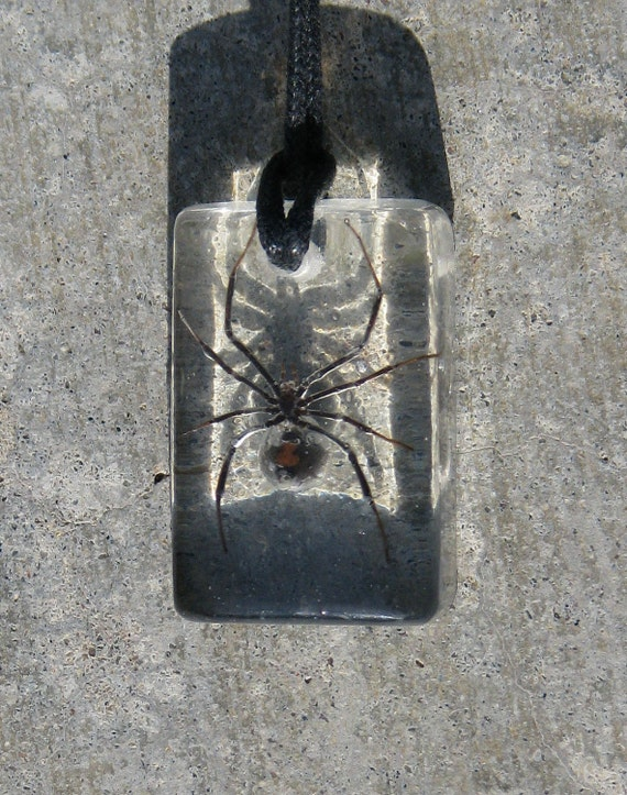 Real Black Widow Necklace