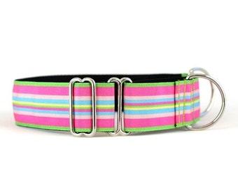 Wide 1 1/2 inch Adjustable Buckle or Martingale Dog Collar in Bubblegum Stripe