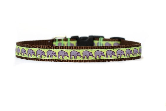 1/2 or 5/8 Inch Wide Dog Collar with Adjustable Buckle or Martingale in On Parade