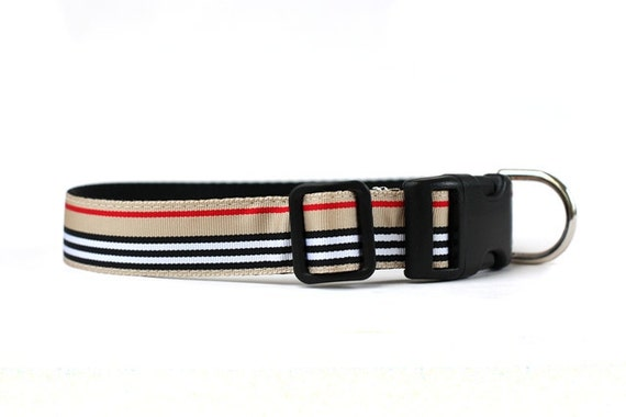 1 Inch Wide Dog Collar with Adjustable Buckle or Martingale in Uptown
