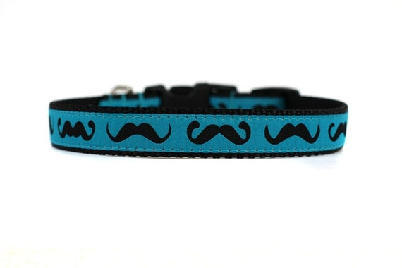 5/8 or 3/4 Inch Wide Dog Collar with Adjustable Buckle or Martingale in Moustaches in Blue