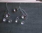 Acetabularia earrings