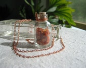 The Third Treasure. Carnelian chips in glass bottle on long copper necklace