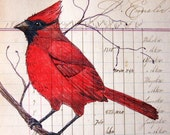 Primitive Folk Art Cardinal and Vintage Paper Print - digiliodesigns