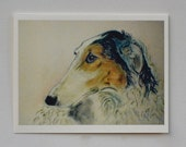 Noble Scrutiny Borzoi Dog Art Note Cards By Cori Solomon