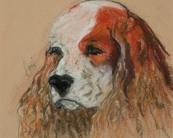 Idle Thoughts Cocker Spaniel Dog Art Framed Pastel Drawing By Cori Solomon