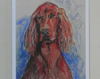 Irish Setter Dog Art Note Cards By Cori Solomon